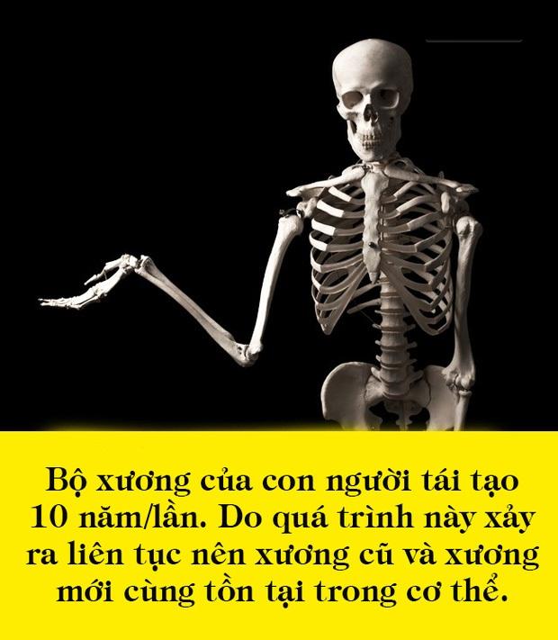 cơ thể con người, điều bí ẩn