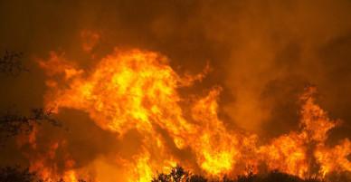 Đám cháy tồi tệ nhất lịch sử làm ít nhất 50.000 người rơi vào cảnh khốn cùng