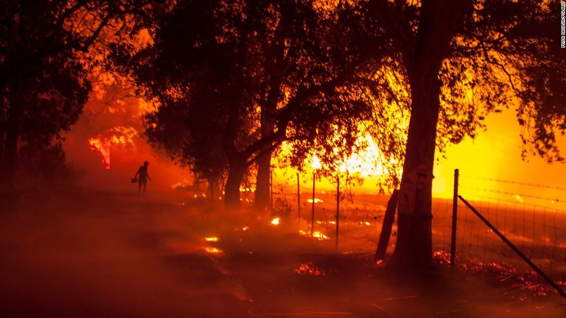 California, cháy rừng ở California