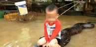 Bé trai ba tuổi cưỡi con trăn 50kg ở Thanh Hóa