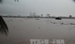 Nước sông Đồng Nai lên mức báo động III do thủy điện xả lũ và triều cường