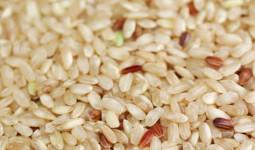 Gạo lứt và gạo trắng: Khác nhau thế nào? Ai nên dùng gạo lứt?