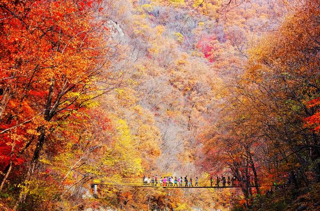 5 điểm đến mùa thu sẽ khiến bạn ngất ngây vì phong cảnh đẹp như trong mơ - Ảnh 5.