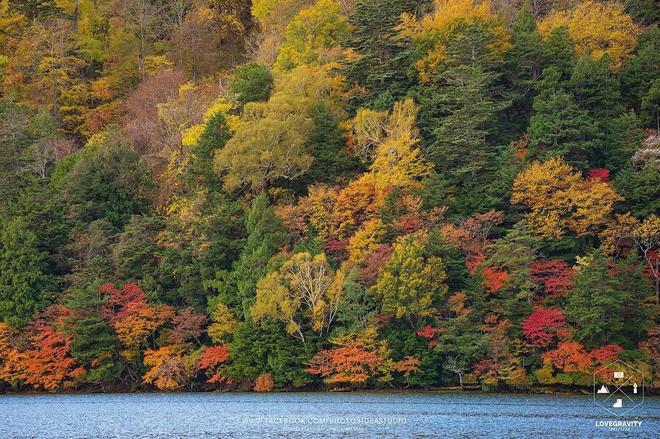 5 điểm đến mùa thu sẽ khiến bạn ngất ngây vì phong cảnh đẹp như trong mơ - Ảnh 8.