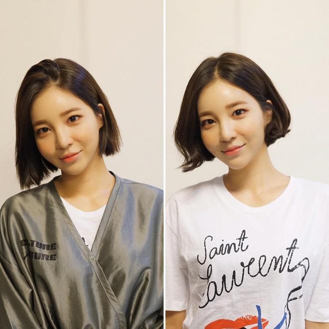 10 tấm ảnh minh chứng: Con gái chọn được kiểu tóc phù hợp là xinh lên gấp bội phần ảnh 7