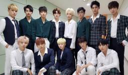 Cặp đôi hoàng đạo hoàn hảo cho 13 thành viên Seventeen