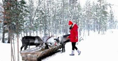 Cô gái Việt lạc bước giữa ngôi làng tuyết trắng vùng Cực bắc