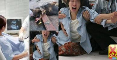 Vừa biết tin vợ mang thai thịt ngay con chó để ăn mừng, hôm sau nhìn thấy máu chảy dưới…