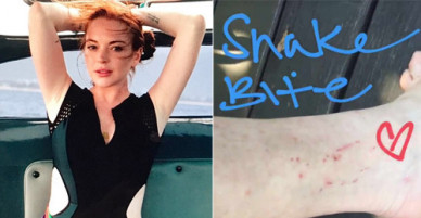 Lindsay Lohan bị rắn cắn khi đi du lịch Thái Lan