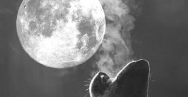 """Kỳ thú siêu trăng """"trăng sói"""" xuất hiện đúng ngày đầu năm mới 2018"""