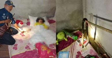 Mở cửa phòng cháu gái, cụ bà đau đớn khi thấy đứa cháu 9 tuổi bị rắn hổ mang lẻn vào cắn chết từ bao giờ