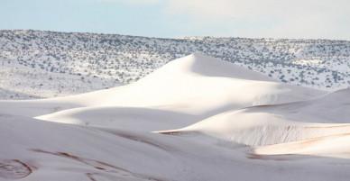 Thế giới lạnh siêu mạnh, sa mạc Sahara nóng bỏng cũng bị tuyết phủ tới 40 cm