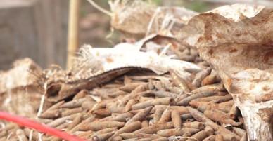 Hơn 2 tấn đầu đạn trong vườn nhà dân ở Hưng Yên - VnExpress
