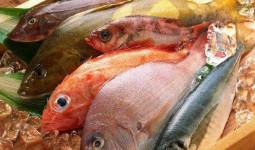 Có thèm đến mấy thì đối tượng này cũng đừng dại mà ăn cá, hại cơ thể còn nhanh hơn mắc ung thư!