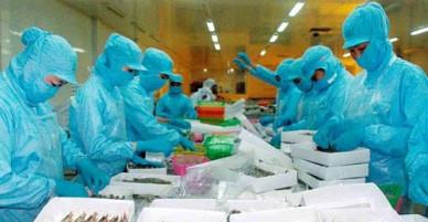 Thiếu liên kết cảnh báo, doanh nghiệp Việt liên tiếp bị lừa