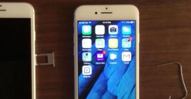 """Apple sẽ miễn phí sửa lỗi """"không có dịch vụ"""" trên iPhone 7"""