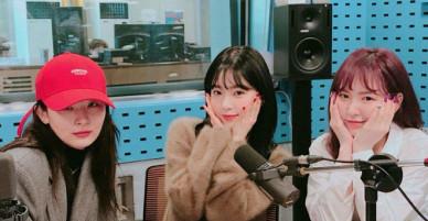 Irene nhận gạch đá vì than thở về ngoại hình