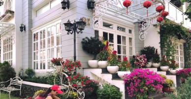 Sao Việt khoe nhà rực rỡ sắc hoa dịp Tết