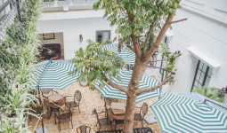 Review nhanh quán cafe rộng 2000m2 đang hot nhất Hà Nội dịp Tết này