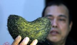Thái Bình: Mổ lợn ăn tết, 2 gia đình phát hiện vật nghi là cát lợn