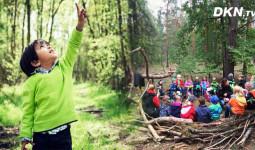 Vì sao 'trường mẫu giáo trong rừng' được các quốc gia văn minh đặc biệt yêu chuộng?