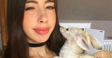 Cuồng ăn chay, nữ blogger ép cả chú cáo mình nuôi không được ăn thịt và bị cộng đồng mạng chỉ trích dữ dội