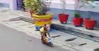 Khỉ lái xe máy mini giữa phố, húc ngã một cậu bé