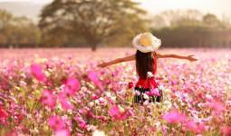 Trắc nghiệm: Loài hoa ưa thích tương ứng với phẩm chất nào của bạn?