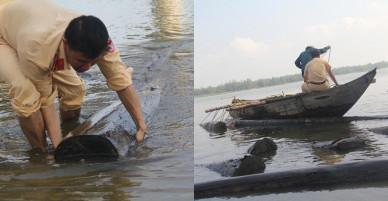 Quảng Nam: CSGT đường thủy lội sông vớt hơn 50 cây gỗ lậu