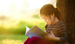 Những cuốn sách giúp trẻ phát triển đa giác quan