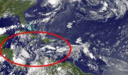 Tiếng sáo bí ẩn vọng lên từ mặt biển Caribbe