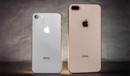 Doanh số iPhone năm 2018 được dự đoán đi xuống