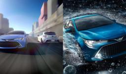 Chiêm ngưỡng Toyota Corolla 2019 sắp ra mắt