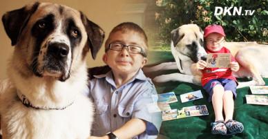 Tình bạn cảm động của chú chó bị vứt lại bên đường ray và cậu bé mắc căn bệnh hiểm nghèo