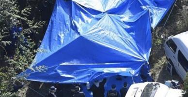 Thảm sát kinh hoàng ở Nhật Bản: Giết cả bố và bà nội