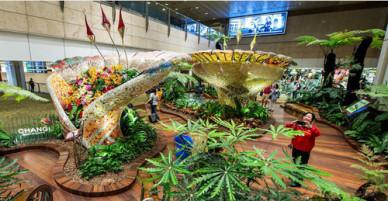 Lý do Changi 6 lần là sân bay tốt nhất thế giới