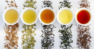 9 loại trà tuyệt hảo giúp cơ thể thải độc mỗi ngày