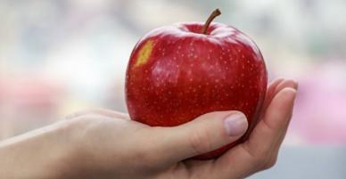 Quả táo miễn phí trên máy bay Mỹ khiến khách bị phạt 500 USD