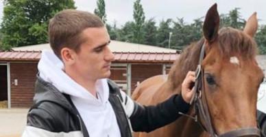 Ngựa đua của Griezmann thắng lớn tại quê nhà