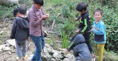 Chuyện không tin nổi về những cậu con trai mọc cô bé của con gái ở Hà Giang