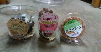 MXH Việt phát sốt với hình ảnh gián đóng hộp được bán tại siêu thị Nhật Bản