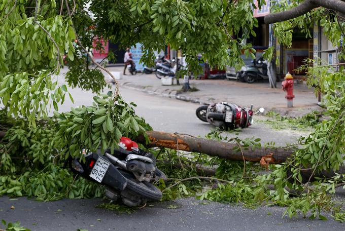 mưa, giông, lốc xoáy, cây đổ, xe máy, con người, giao thông, TP.HCM, tin8