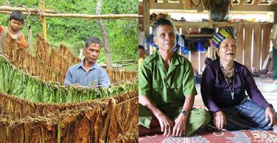 Vợ chồng 50 năm sống biệt lập giữa rừng Quảng Trị