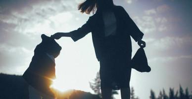 Mẹ đơn thân: Trái tim đã vỡ, chỉ còn cái đầu sáng suốt và đôi mắt tinh tường