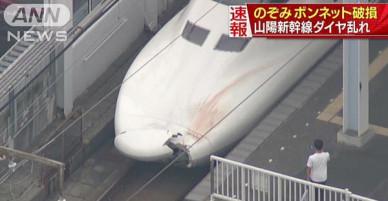 Nhật Bản: Tàu cao tốc va chạm vỡ nứt đầu mà lái tàu không biết, lúc kiểm tra mới phát hiện mảnh cơ thể người kẹt bên trong