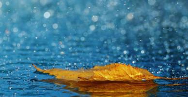 Khúc mưa - lời tự tình tháng 6