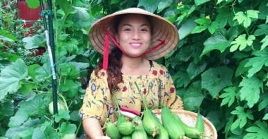 Cách trồng mướp nhiều quả của mẹ Việt tại Nhật