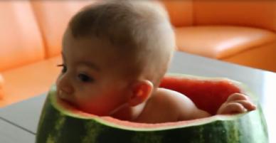 Cậu nhóc ngồi lọt thỏm trong quả dưa hấu gặm cùi