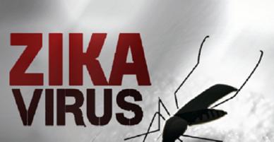TP.HCM: Ổ dịch mới hình thành của virus Zika