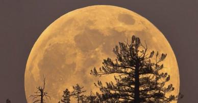 Tối nay (13-11), chúng ta có thể xem sớm siêu trăng lớn nhất trong 70 năm qua